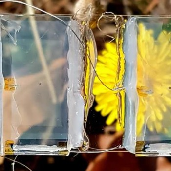 透明太阳能电池,为清洁能源的未来打开了一扇窗